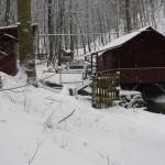 Forellenbrustation Werretal im Winter