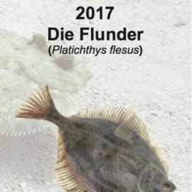 Die Flunder! Fisch des Jahres 2017