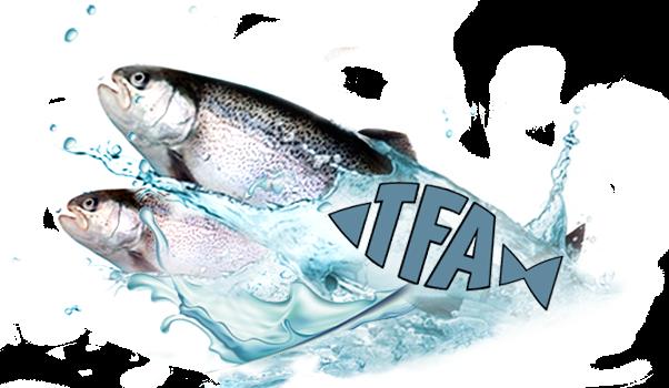 Wichtiger Hinweis zum Fischbesatz