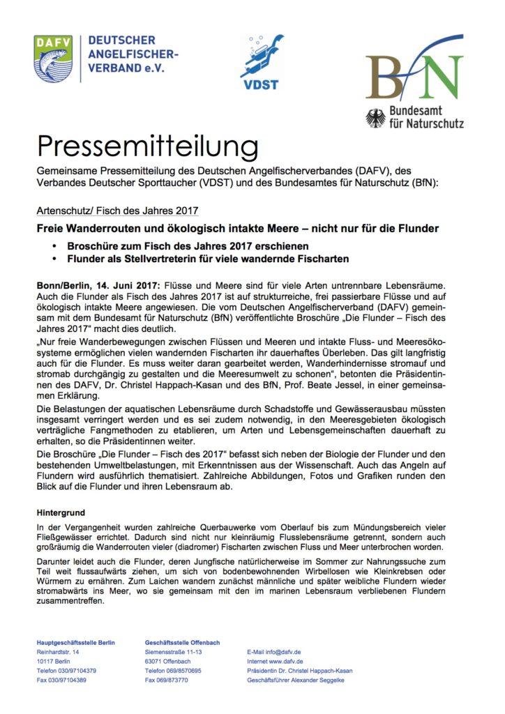 Pressemitteilung DAFV zur Flunder