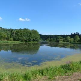 Schulung von Gewässerwarten, Behörden und Kommunen 2018