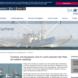 Angler müssen Dorschfänge in der Ostsee ab 2017 begrenzen