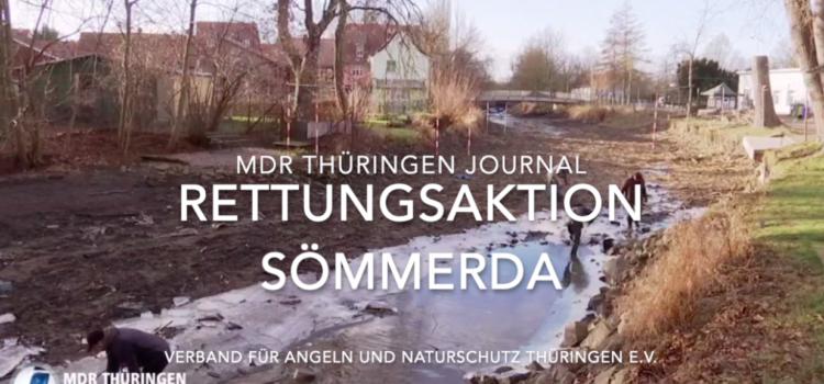 Rettungsaktion in Sömmerda 2019