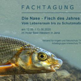 Fachtagung: Die Nase – Fisch des Jahres 2020