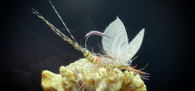 Fliegen binden beim VANT