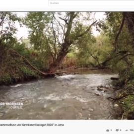 """17. Fachtagung """"Fischartenschutz und Gewässerökologie 2020″"""