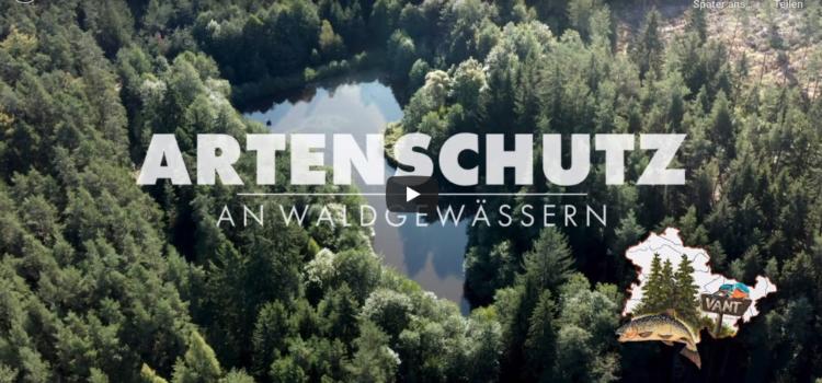 Artenschutz an Waldgewässern