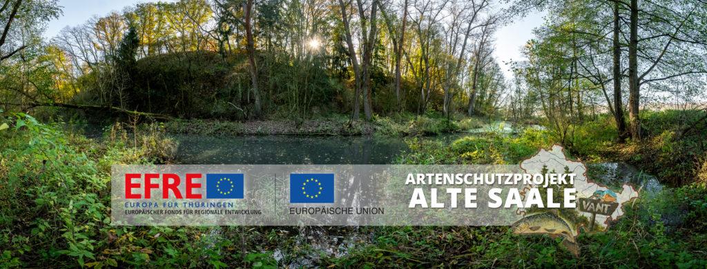 Titel ENL Projekt Alte Saale